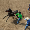Wild Horse Racing a highlight of the week