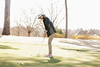 JMadert_PRHS_Golf_Girls_0310_2014_004