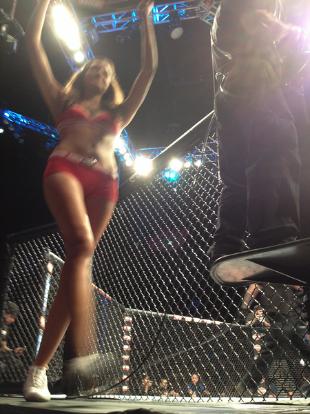 Ring Girl - Cage side photo - TUF 19 Finale 7/6