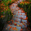 Steps Of Seasons And Color - Portland Japanese Garden, Oregon St