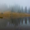 Mystery Island At Tipsoo Lake -Mount Rainier National Park, Washington