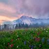 Mt Rainier Clearing Up On Dead Horse_Mount Rainier National Park_Washington
