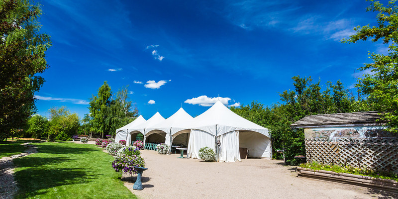 Tents for a Party