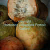 0001 Custard Apple