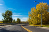Scenic Autumn Road