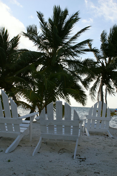 Tropical Beach Chairs