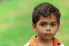 Four year old Aboriginal boy on green background