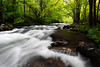 Middle Prong Little River (Tremont Area - Great Smoky Mountains National Park)