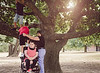Boys using a Wheelchair to help Climb Tree