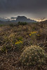 TX-2013-150: Big Bend National Park, Brewster County, TX, USA