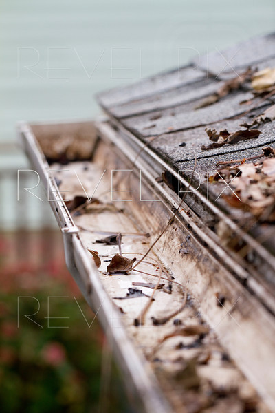 a few leaves have fallen into a gutter. shallow depth of field.