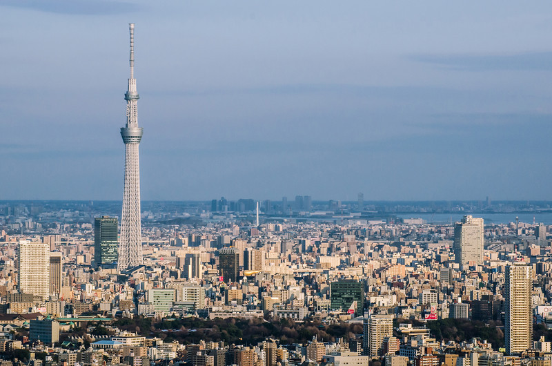 Skytree And The Little City