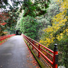 Across a Red Bridge.<br /> Near Arashiyama, Kyoto.