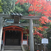 Autumn in Yasaka Shrine