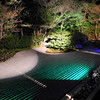 Zen Garden by Night. At Entokuin (a Zen Buddhist Temple), lit up of the 2013 Higashiyama Hanatouro in Kyoto.