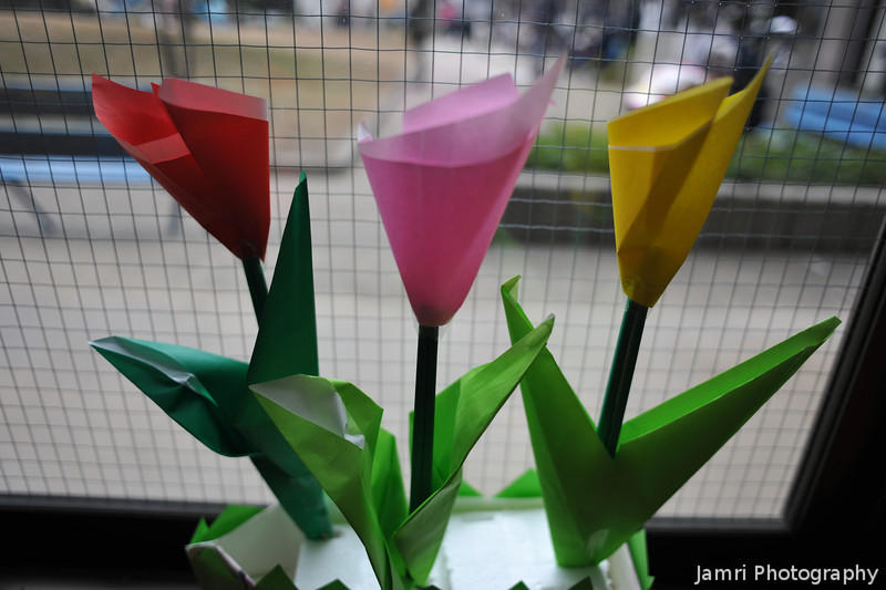 Paper Tulips. A vision of spring in late autumn. At the Megumi Kindergarten Annual Art Exhibition.