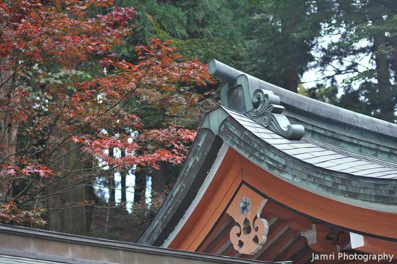 Autumn Leaves and Temple Roof. On Mt. Hiei.