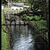 Bandon Fish Hatchery