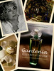 ELIZABETH TAYLOR Gardenia 2003 US 'Introducing my most personal fragrance - Something wonderful is about to happen'