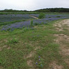 BLUEBONNETS AT MULSHOE BEND LOW FLY OVER
