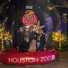 TXU Energy Presents Zoo Lights
