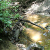 Bridge of sorts.. over the ditch water on Bullett Creek #3<br /> Starr Mtn TN