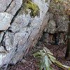 "Massive rock cliff ...on the way to Yellow Creek Falls. You can see Kenny toward the right of the frame for scope.<br /> He is 6'4"" and has plenty of head room!<br /> Slopes of Starr Mtn. TN<br /> Cherokee National Forest, Southern Section"