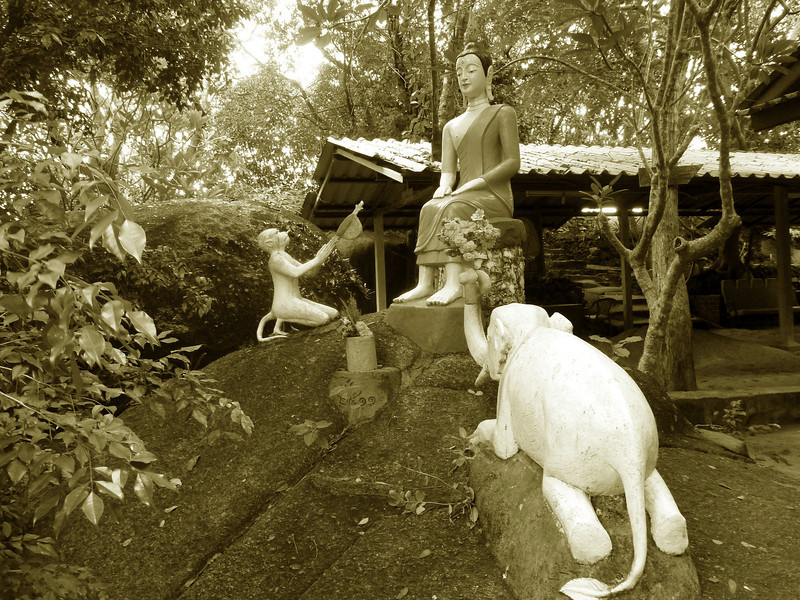 The Monkey and Elephant are revered and greatly respected in Thai Culture