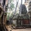 Morning Light Through the Trees and Ruins, Ta Prohm, Angkor, Cambodia