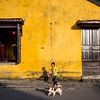 Girl and Dog, Hoi An, Vietnam