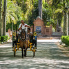 Horse Ride in the Park, Seville