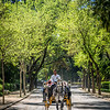 Spring Ride in the Park, Seville