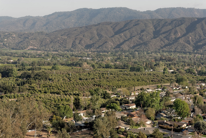 A view of Ojai Valley from Shelf Rd.