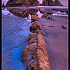 Point of the Arches, in Olympic National Park, is a fantastic pace to watch the sun rise. Having an epic low tide is a nice bonus.