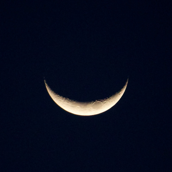 cheshire cat moon