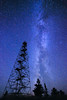 "MILKY WAY 1991<br /> <br /> ""Tower Galaxy""<br /> <br /> The Milky Way shines in the sky above a fire tower in Northeast Minnesota."