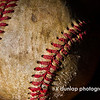 "03.31.14 = Baseball<br /> <br /> It's finally here! America's pastime. <br /> <br /> It's a round ball and a round bat, and you have to hit it square.""  Pete Rose"