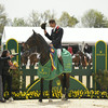69 - William Fox-Pitt - Bay My Hero - 030
