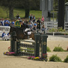 69 - William Fox-Pitt - Bay My Hero - 023