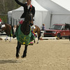69 - William Fox-Pitt - Bay My Hero - 032