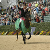 69 - William Fox-Pitt - Bay My Hero - 035