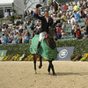 69 - William Fox-Pitt - Bay My Hero - 034