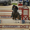 69 - William Fox-Pitt - Bay My Hero - 024