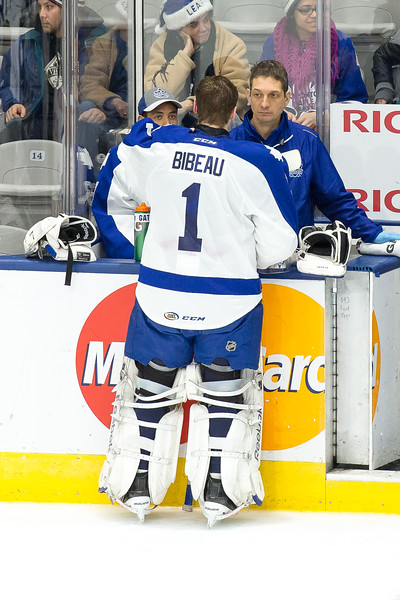 December 21th, 2014 - TORONTO CANADA - The Toronto Marlies  battle against the Milwaukee Admirals at Ricoh Coliseum  (Photo credit: Christian Bonin/TSGphoto.com)