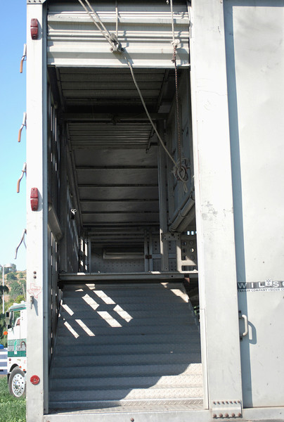 Wilson 1980 double deck livestock trailer rr door