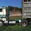 Peterbilt COE 1984 w Wilson 1980 livestock trailer side lf closeup