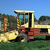 New Holland 1984 1116 Windrower side lf