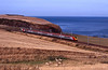 On the 19th we were back in the vicinity of Burnmouth, having walked to St Abbs Head. A VXC class 221 hurrying south along the cliff top.