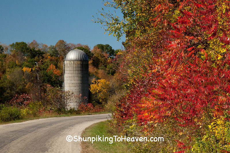 Silo and Sumac, Autumn Road Scene, Sauk County, Wisconsin