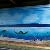 Sea Life Mural Under Railway Pass<br /> <br /> Cane Haul Road<br /> Waialua, Oahu<br /> 5 May 2012